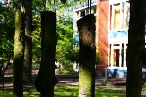 Schulgarten Klanghölzer (2)